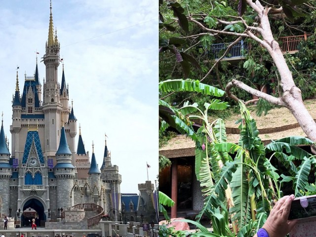 People are sharing photos of what Disney World's parks and hotels look like after Hurricane Irma