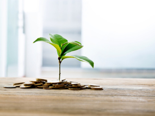Green Pensions Charter: 50 firms commit to working towards net zero pensions