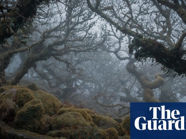 Inspired by Nature, National Parks Photography Competition 2020