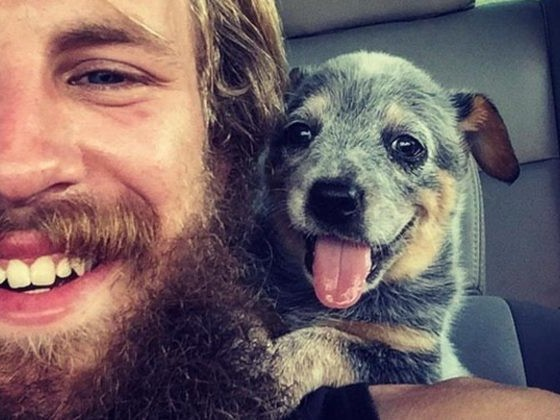 These 15 First Meetings Between Dogs And Their New Families Are Way Too Adorable