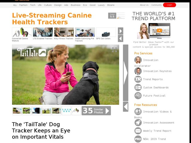 live streaming canine health trackers the tailtale dog tracker