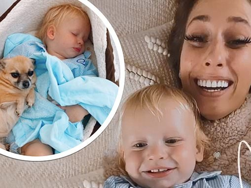 Stacey Solomon shares sweet snap of son Rex sleeping in a DOG BED