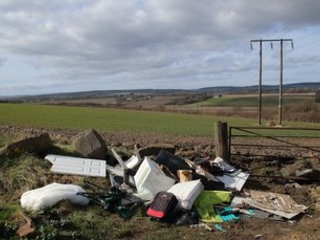 'Deteriorating': England's natural world in worsening state, government warned