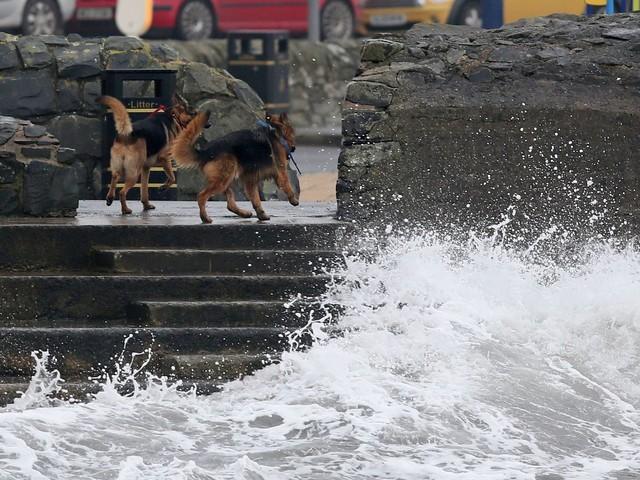 Storm Ophelia: Latest Updates As Ex-Hurricane Batters Ireland And UK