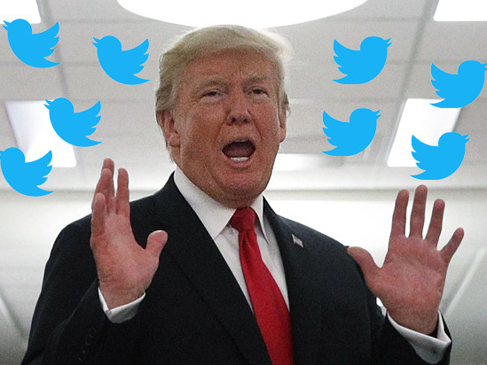 Trump Considers Executive Order to Make FCC Police How Social Media Prioritizes Content (Report)
