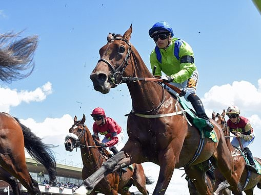 Austrian School teaches rivals a lesson in the Queen's Cup Stakes victory at Musselburgh