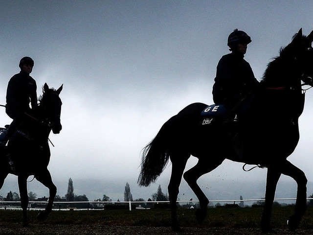 Anti-Horse Racing Campaigners Criticise 'Contradictory' Equine Flu Ban