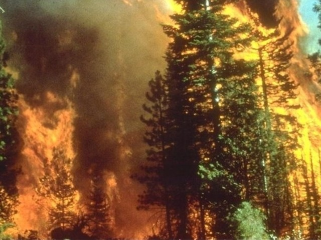 Human activity fanned the flames raging though California's wine country