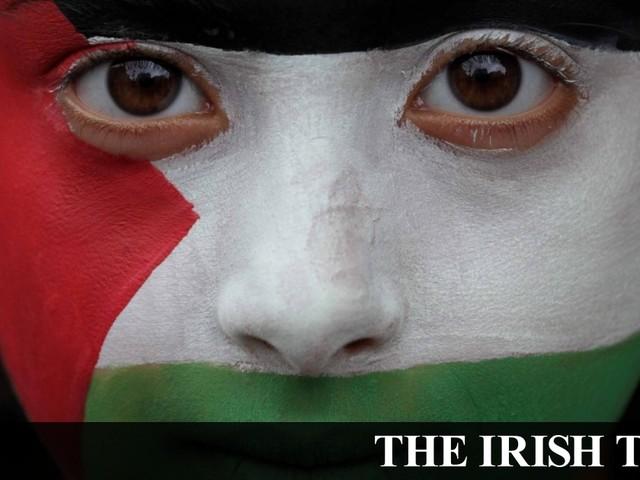 Standing ovation as Seanad backs Bill banning Israeli settlement goods