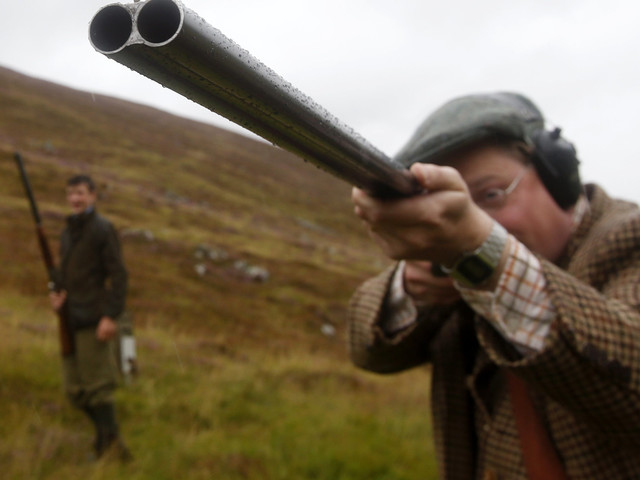 Glorious 12th: What Is It And Why Is Grouse Shooting So Controversial?