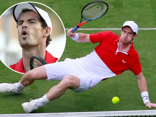 Andy Murray sees doubles dream come crashing back to earth after defeat at Eastbourne… but hip survives