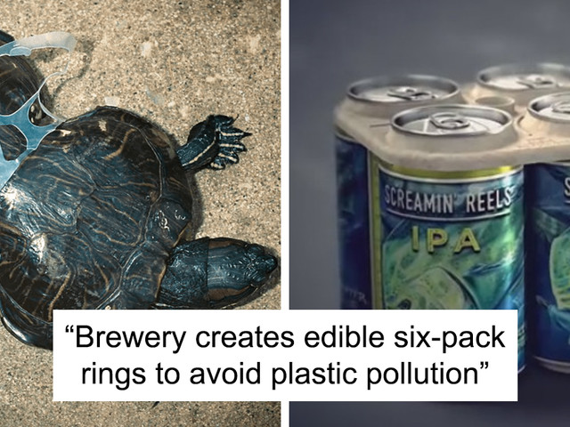13 Feel-Good Stories About People Saving Our Planet
