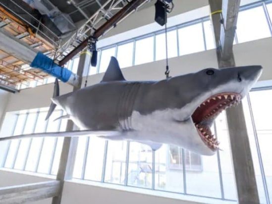 'Jaws' Last Surviving Shark Model Installed in Oscars Academy Museum (Video)