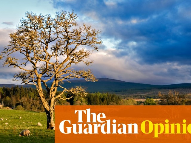 Countryside versus town? Please don't turn this into a culture war | Patrick Barkham