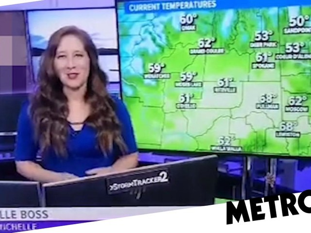 News station investigated after airing X-rated clip during weather broadcast