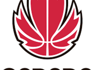 Canada Basketball sign 3x3 deal with drinks giant Red Bull ahead of sport's Olympic and Commonwealth Games debuts