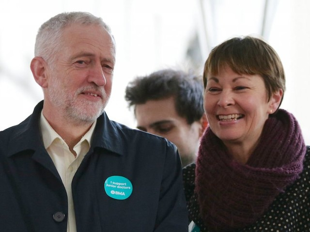 Green Party calls for electoral pacts with Labour and the Lib Dems to 'stop the Tories wrecking our country'