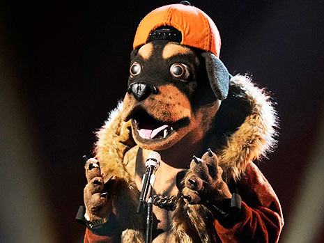 'The Masked Singer': The Top Clues About The Identity Of The Rottweiler