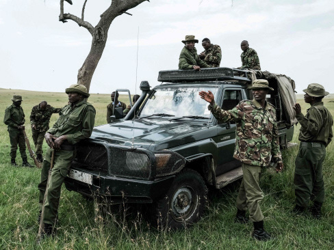 In Kenya, anti-poaching dogs are wildlife's best friends