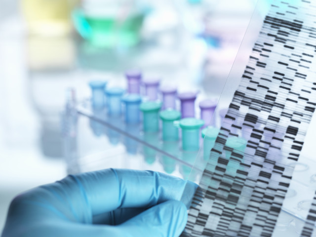 Disputed DNA analysis software's code open for inspection after court order