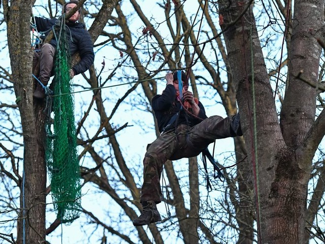 Hundreds of HS2 protesters attempt to prevent tree felling