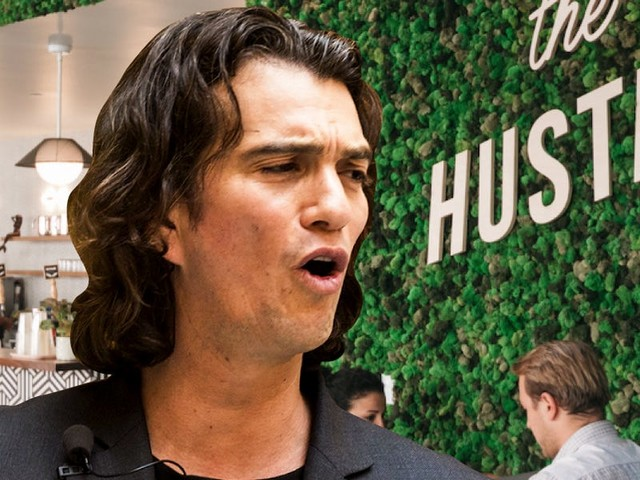 An expert who studies venture capital says the WeWork 'smackdown' won't change the way the industry works — but he's telling investors how they can avoid the same mistake