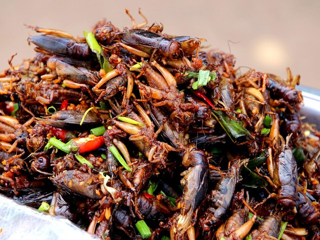 Crickets As Superfood: Yea Or Nay?