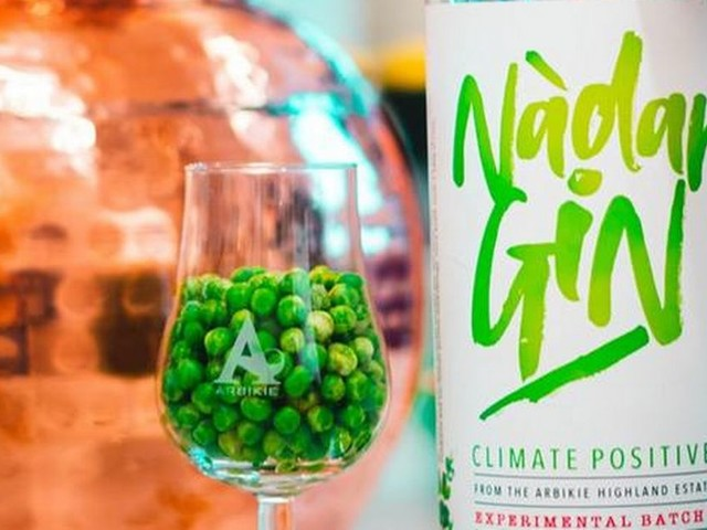 How a tipple of gin made from peas could help save the rainforests