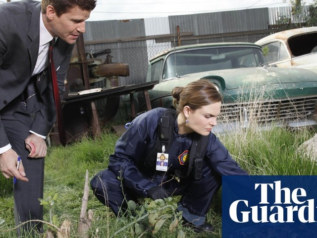 Bones crunching: seven days, 12 seasons, 246 episodes and one addled brain