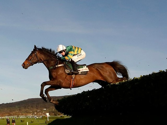 Horseracing to resume on Wednesday following equine flu outbreak in boost for Cheltenham Festival