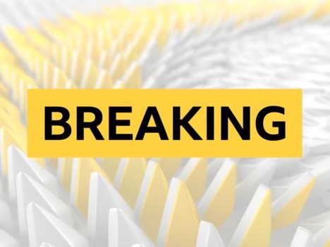Dedryck Boyata: Celtic joins Hertha Berlin from Celtic