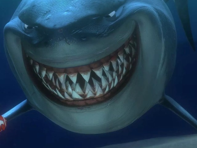 AllEars Quiz: How Much Do You Know About Disney Sharks?