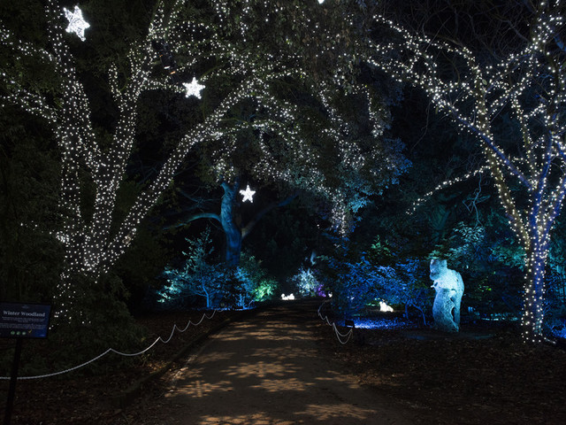 Step Into The Sparkling Winter Wonderland That Is Christmas At Kenwood