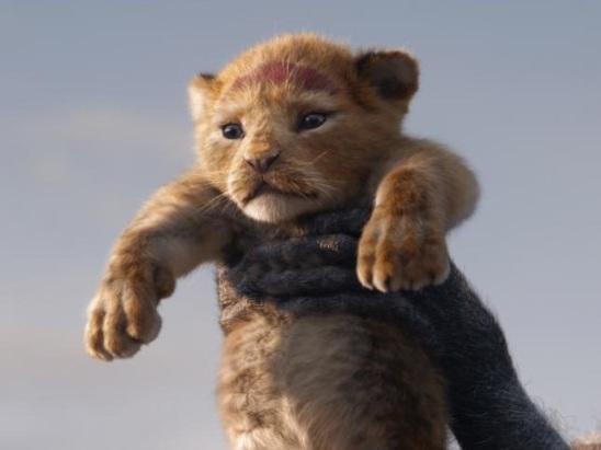 'Lion King' Reactions: Hakuna Matata, Disney – Early Responses Are Good