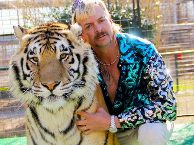Netflix's Tiger King bosses say 'a lot' of Joe Exotic's big cats 'will starve or be put down' as zoo industry declines