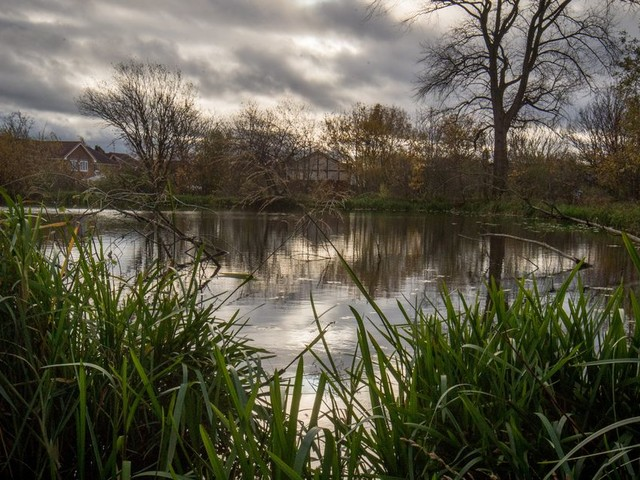 The secret lake behind a tip that's loved by Levenshulme locals