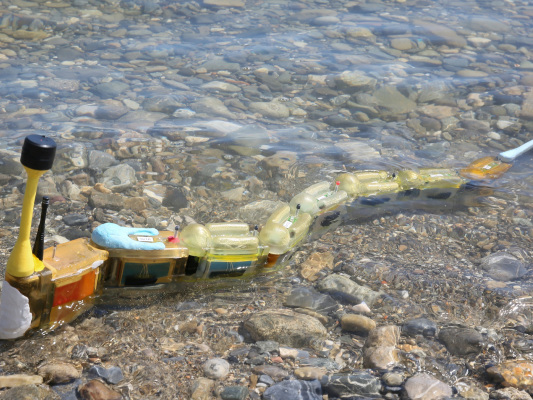 The Envirobot robo-eel slithers along the shore for science