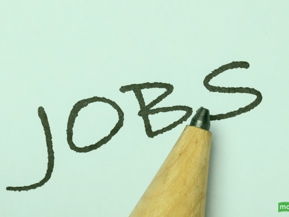 Job searches for roles in hospitality, tourism on rise since May: Report