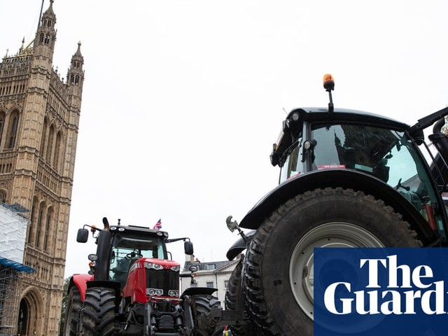 MPs reject calls by campaigners to enshrine food safety in UK law