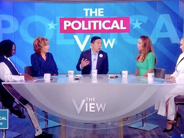 Andrew Yang Addresses Mic-Cutting Dispute During First Presidential Debate (VIDEO)