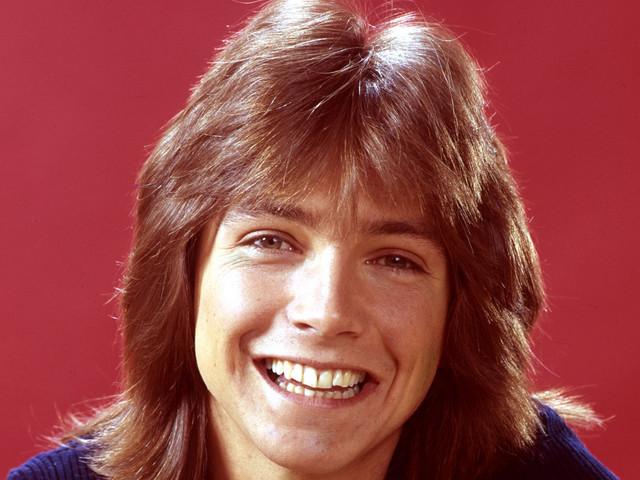 'The Partridge Family' Star And 1970s Heartthrob David Cassidy Dies At 67