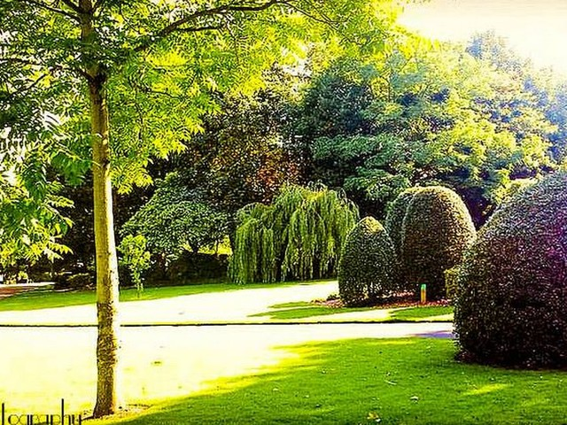 Five Kirklees parks recognised as some of the best in the country