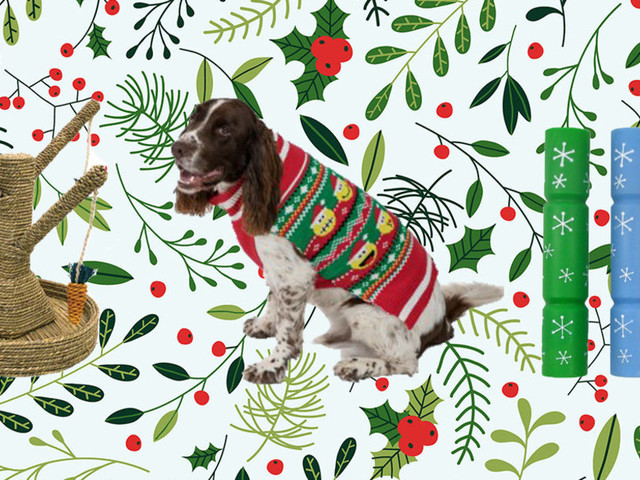 The Best Pets' Christmas Presents For Dogs, Cats, Guinea Pigs and Hamsters