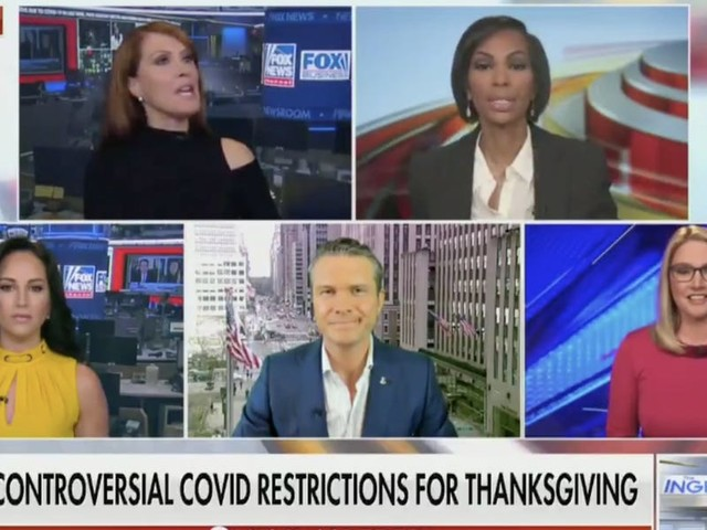 Fox News panel erupts at a liberal guest for saying it's 'not time to joke' about COVID-19 as US deaths near 250,000