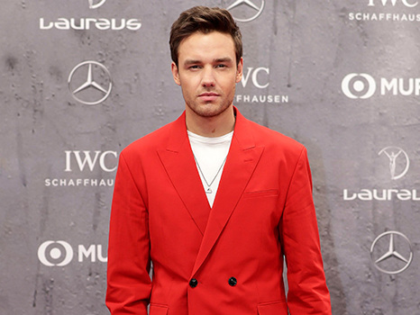 Liam Payne Shows Off Wild Quarantine Beard While Trying To 'Chat' With Harry Styles On TikTok— Watch