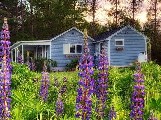 The best Airbnbs in Maine