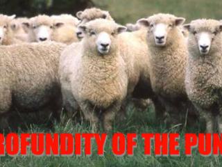 Profundity of the Punditry: Florence Quadruple Whammy