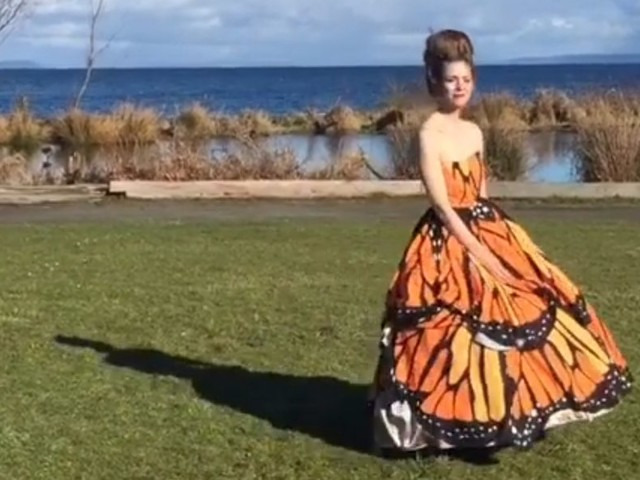 A teacher hacked a ballgown to turn it into a transforming dress — here's how it works