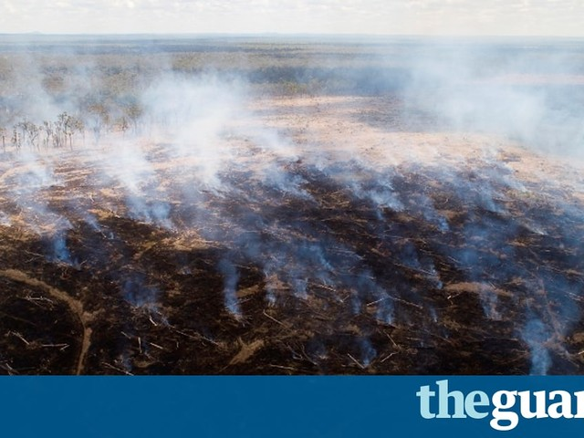 Queensland farmers suspected to have defied tree clearing controls in 'deforestation frenzy'