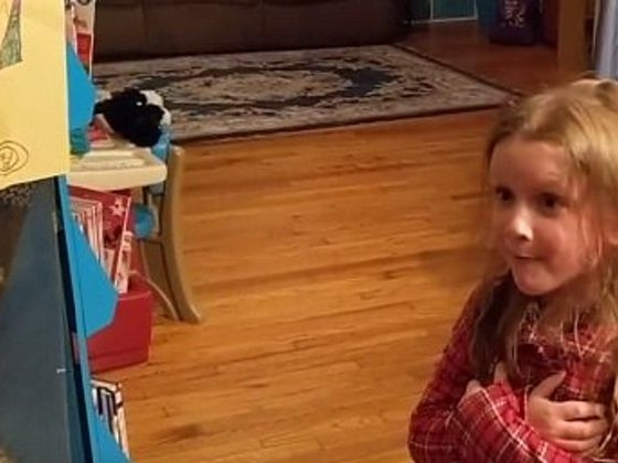 She Wanted To Adopt Her Neighbors' Cat. When They Moved, Her Wish Came True!